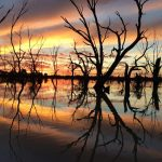 Darling River boat tours